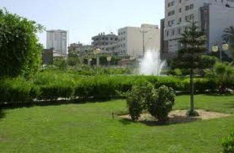 فرصة في ارقي مواقع غزة لاتفوتك