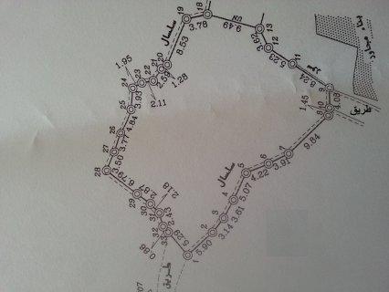 قطعة ارض في قرية جيبيا طابو على قمة تلة