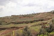 ارض للبيع في الخليل الحدب 700 متر